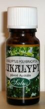 Eukalypt esenciální olej 10ml