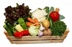 Zeleninová BIO bedýnka - velká