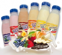 Jogurt. mléko příchuť vanilka 0,25l PET