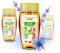 Čekankový zázvorový nektar 250ml